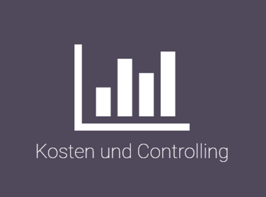 Controlling und Balanced Scorecard